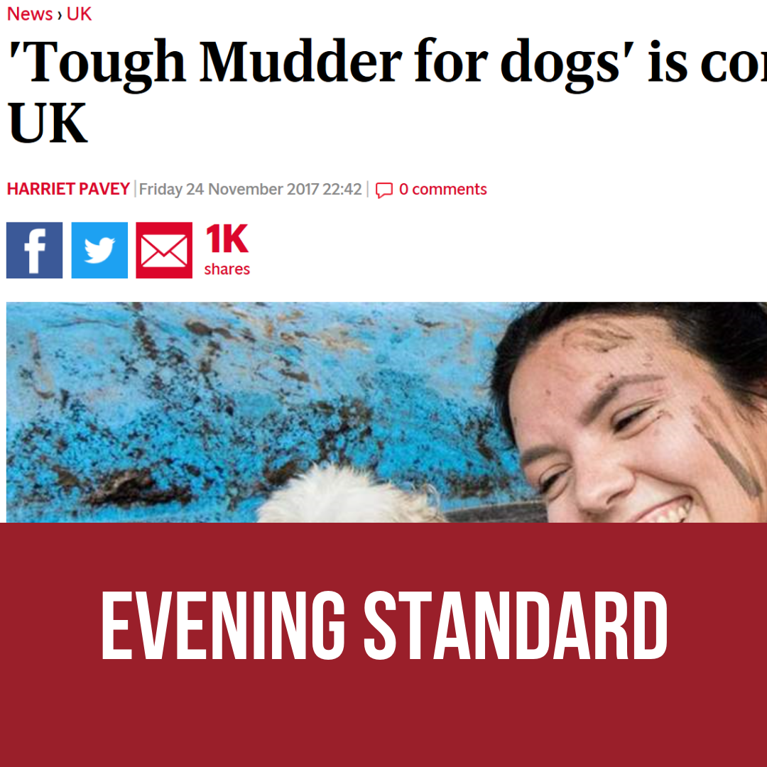 """""""Tough Mudder for dogs"""" is coming to the UK"""