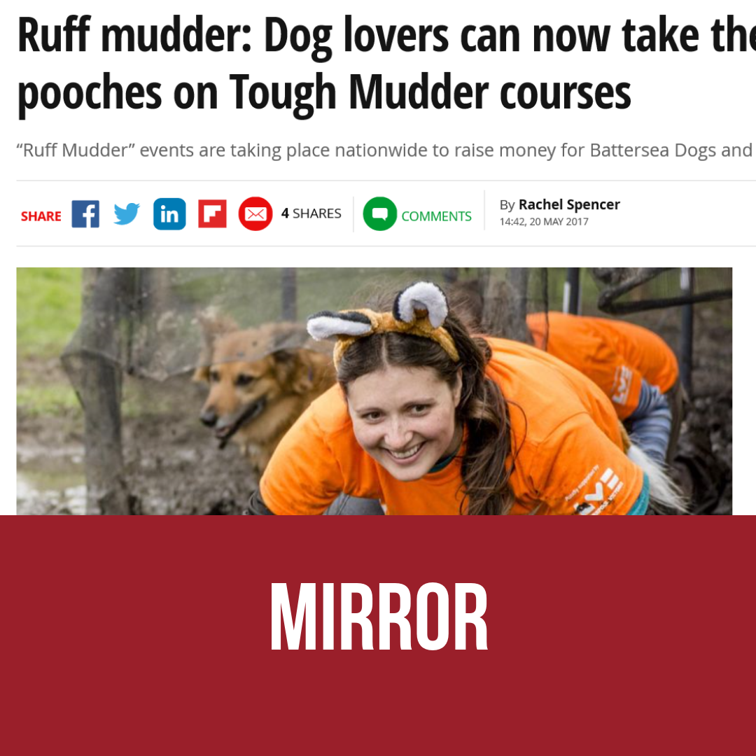 Ruff mudder: Dog lovers can now take their beloved pooches on Tough Mudder courses