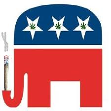 pic courtesy of www.theweedblog.com