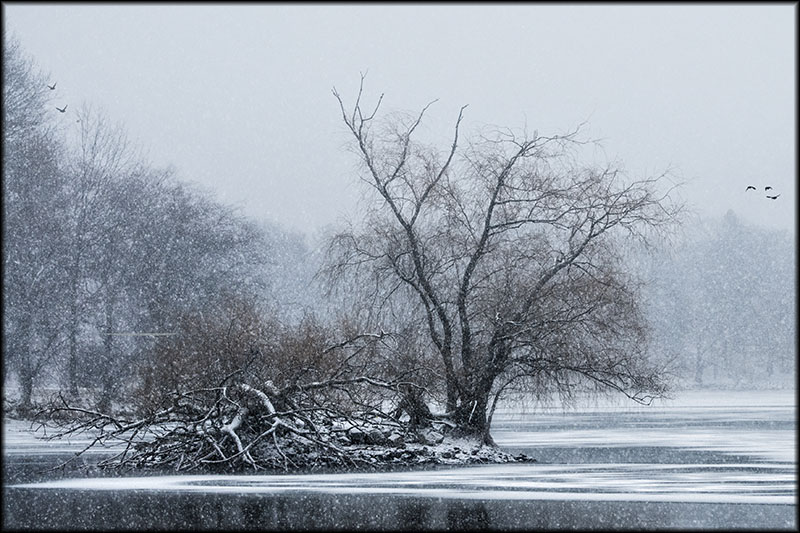 02431pxp.Winter_Warmth.jpg