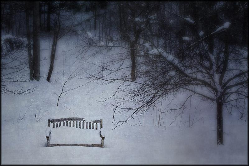 02649pxp.Winter.jpg