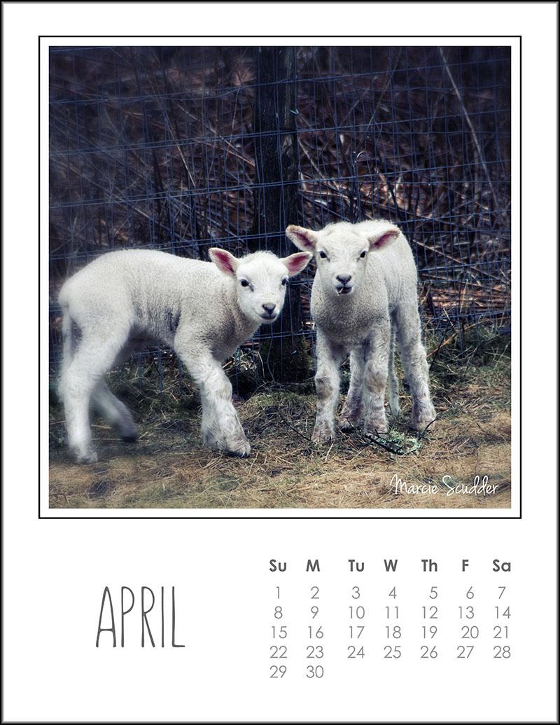 03187pxp.April_Calendar_2018.jpg