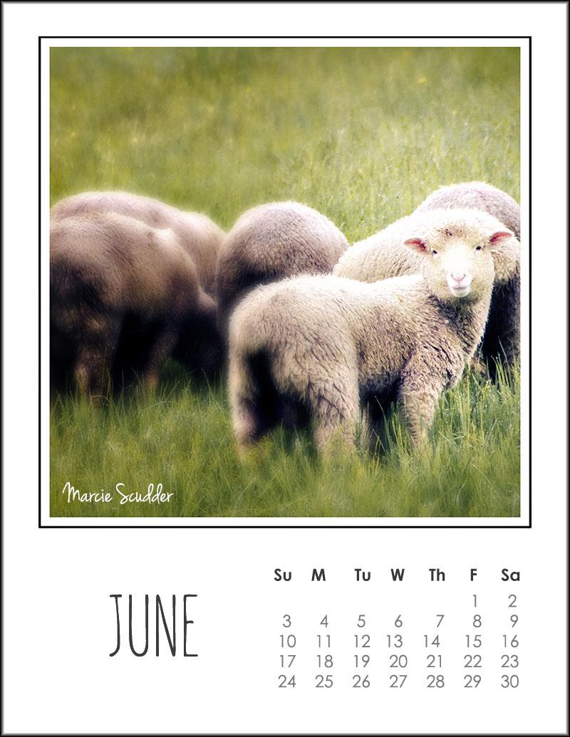 03305pxp.June_Calendar_2018.jpg