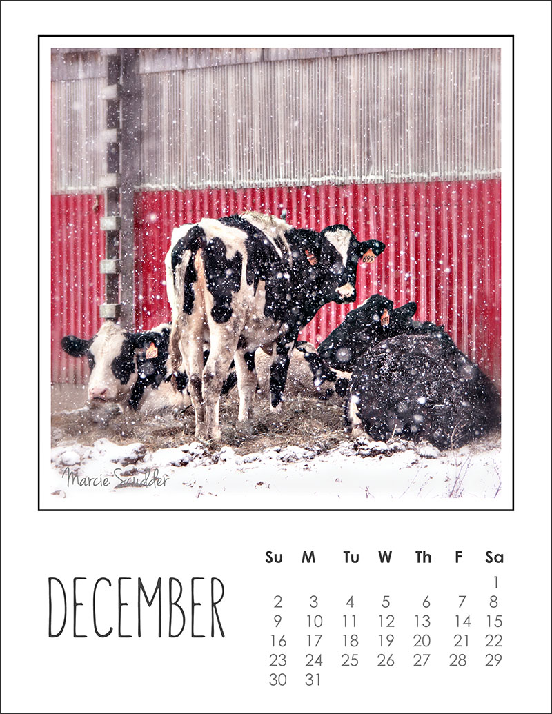 03285pxp.December_Calendar_2018.jpg