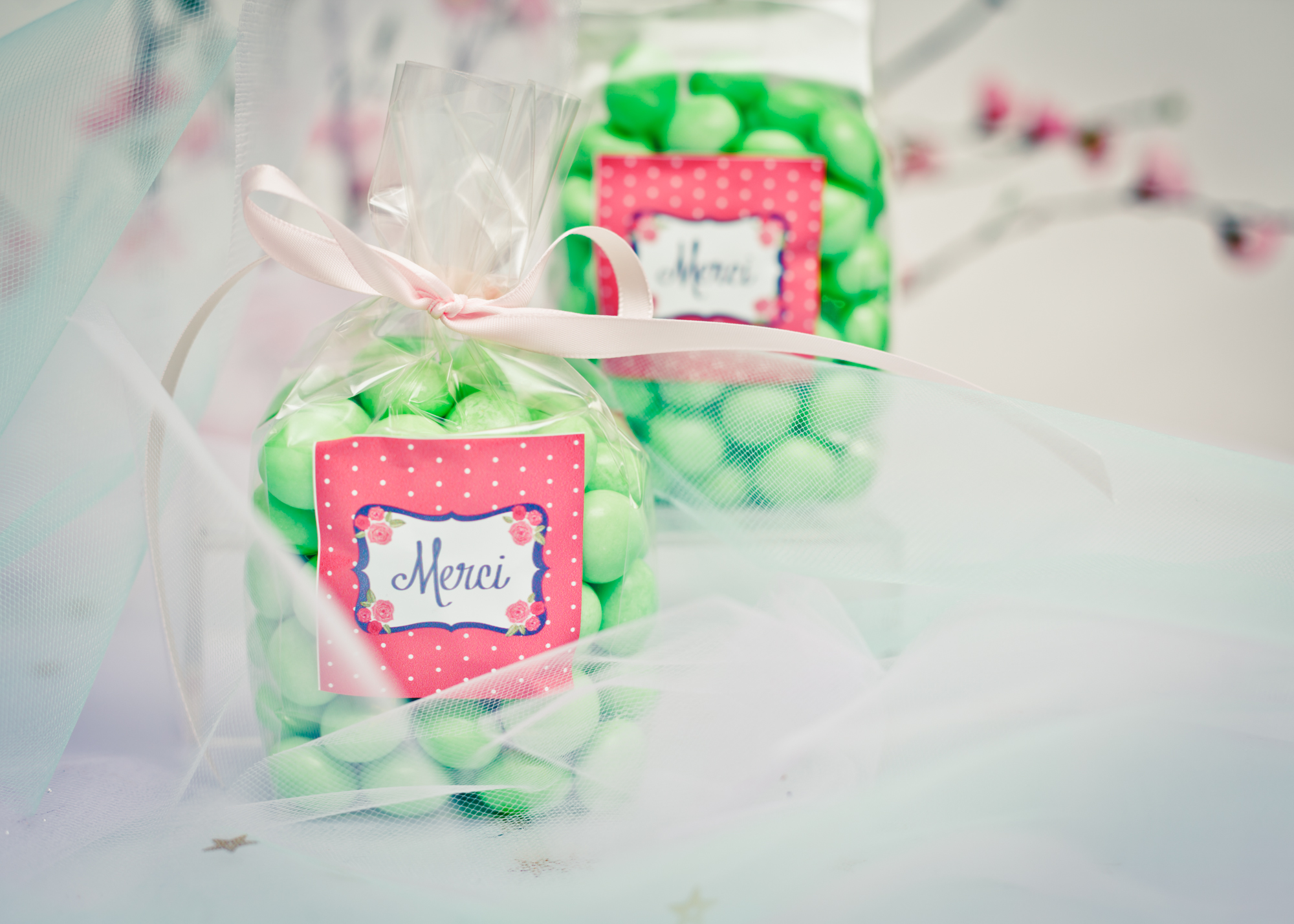 Personalized candy bags @www.thedetaileddiva.com.jpg