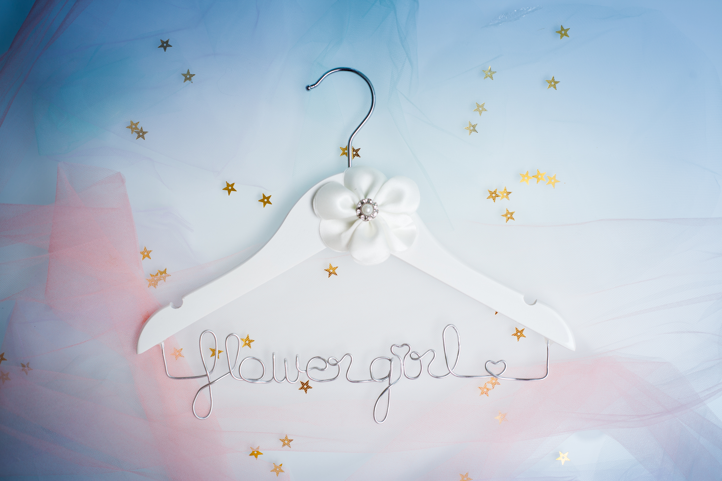 Small Wire Hanger @www.thedetaileddiva.com.jpg