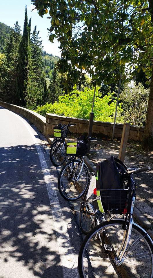 fiesole bike tour_2.jpg