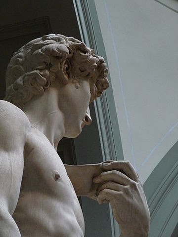 'David'_by_Michelangelo_JBU13.JPG