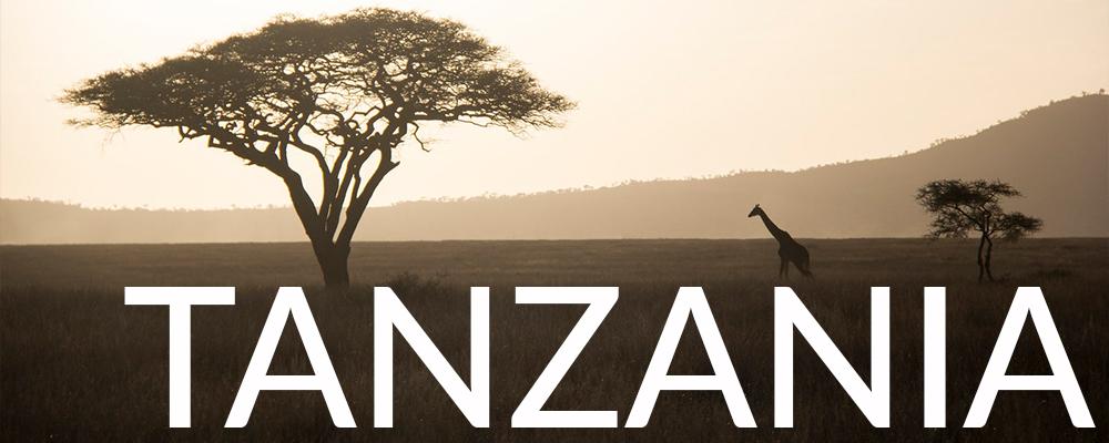 TANZANIAWEBSITEBUTTON.jpg