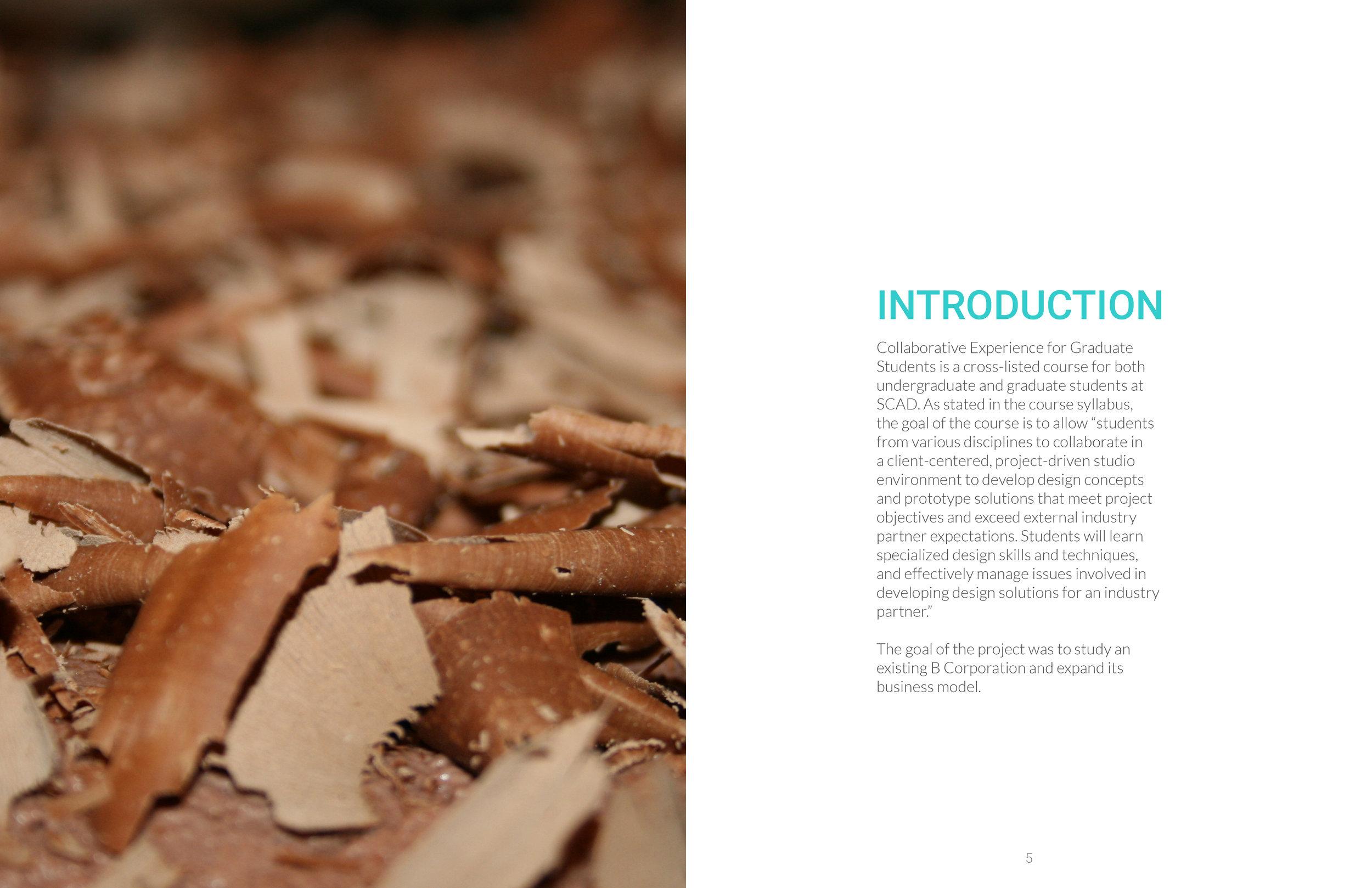 Process Book3.jpg
