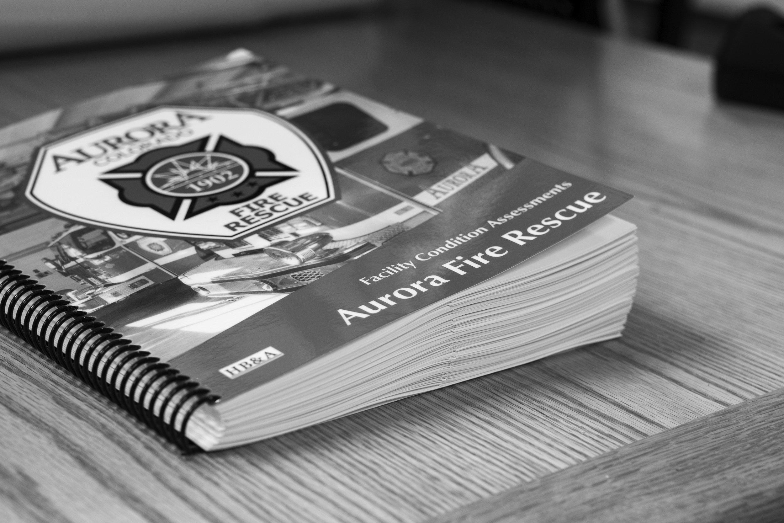 Aurora book.bw.jpg