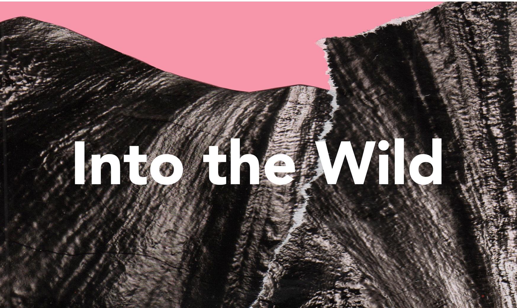 into+the+wild.jpg