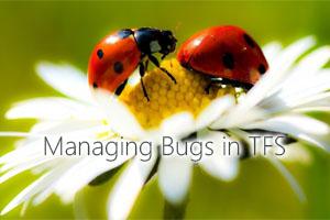 Bug2small.jpg
