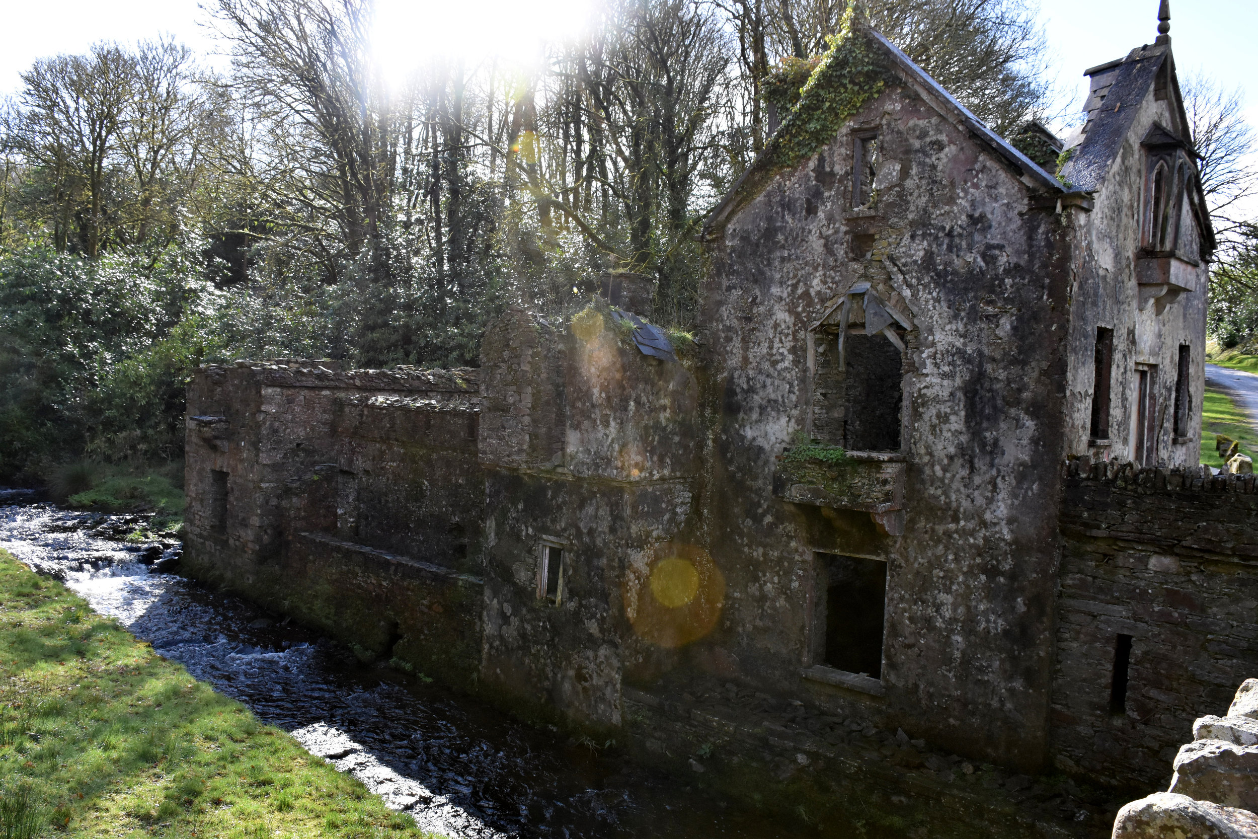 Abandoned building, stream, sun, greeeeeen, repeat.