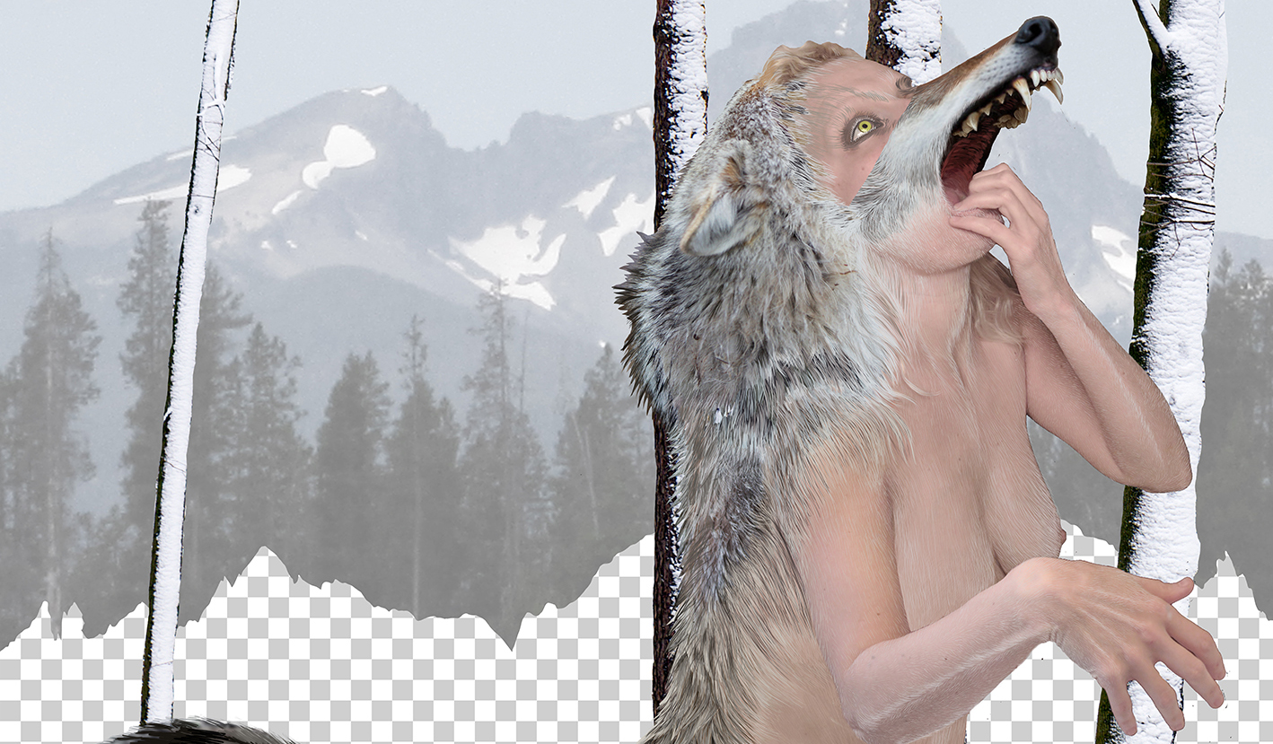 Coyote Woman in the Cascades, photo collage and drawing, Julia Oldham, 2017