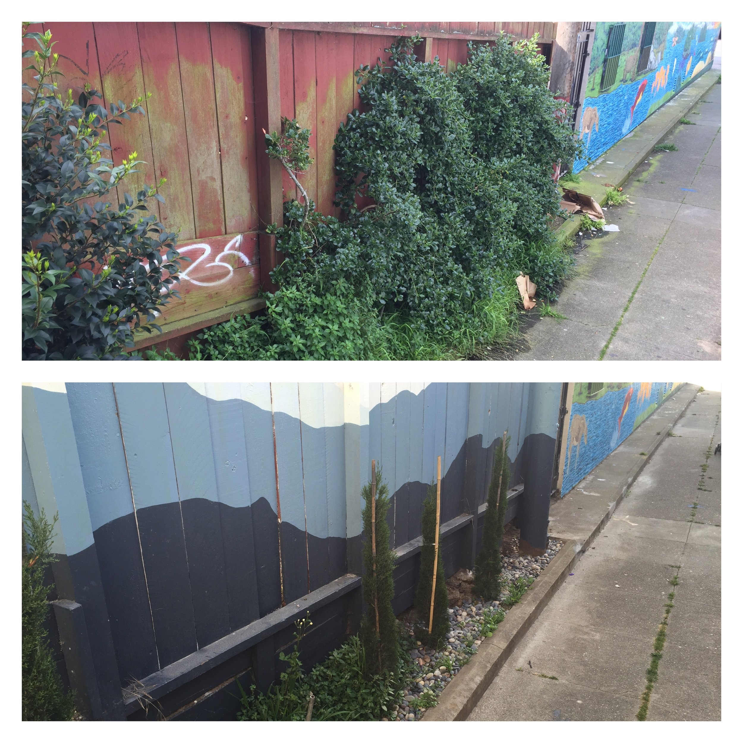 Kenny Alley south wall, before and after the addition of Italian Cypress, river rock and mountain mural, April 2016