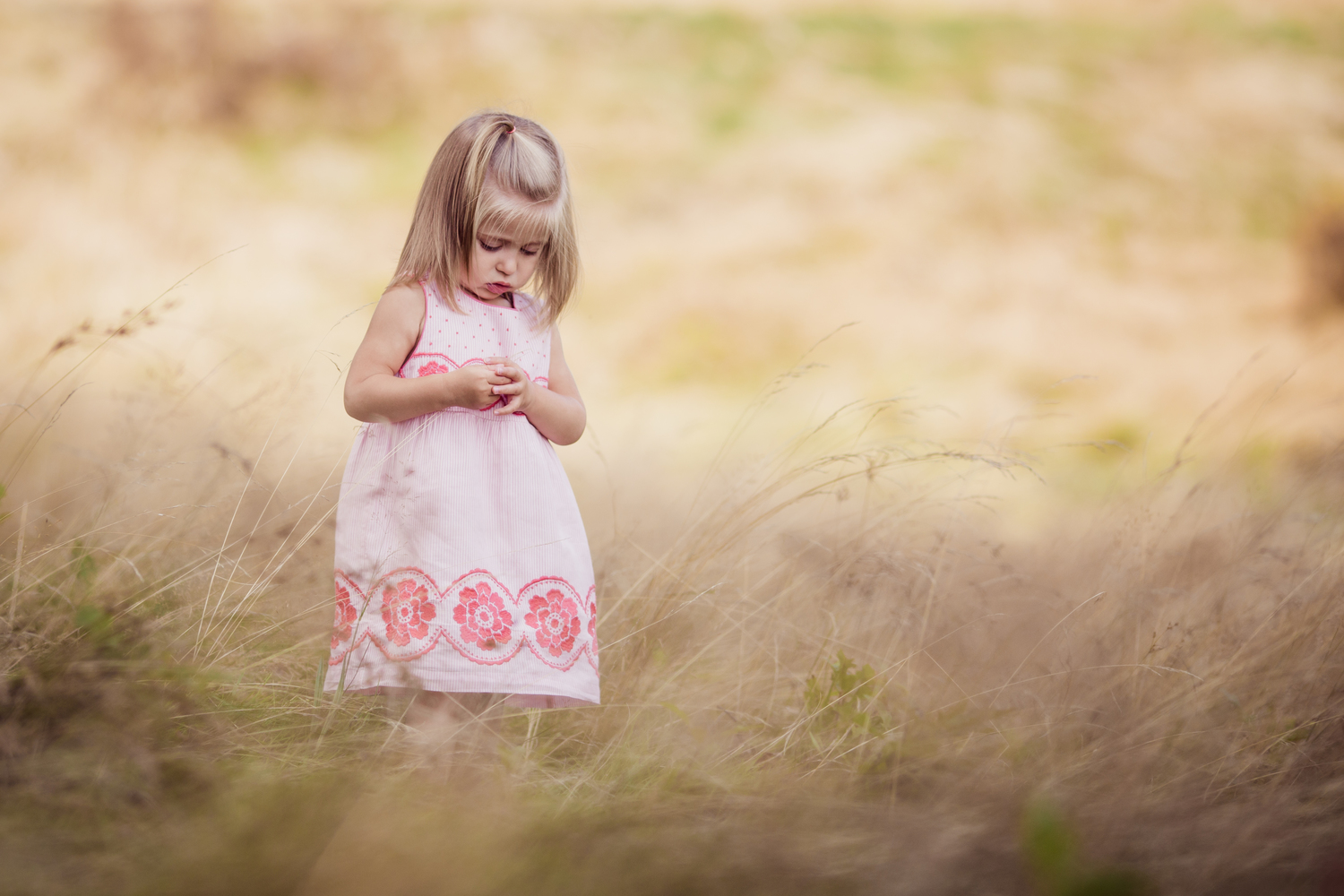 beautiful park setting with little girl | lyndhurst family photographer