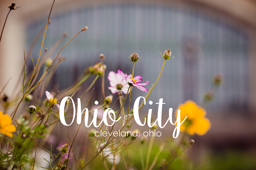 ohio-city-tour-cleveland-ohio-phototgrapher-east-25th.jpg