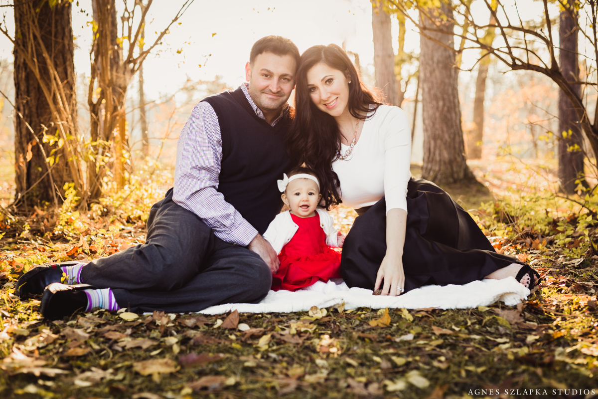 family of 3 sitting on grass in park | cleveland, baby photographer