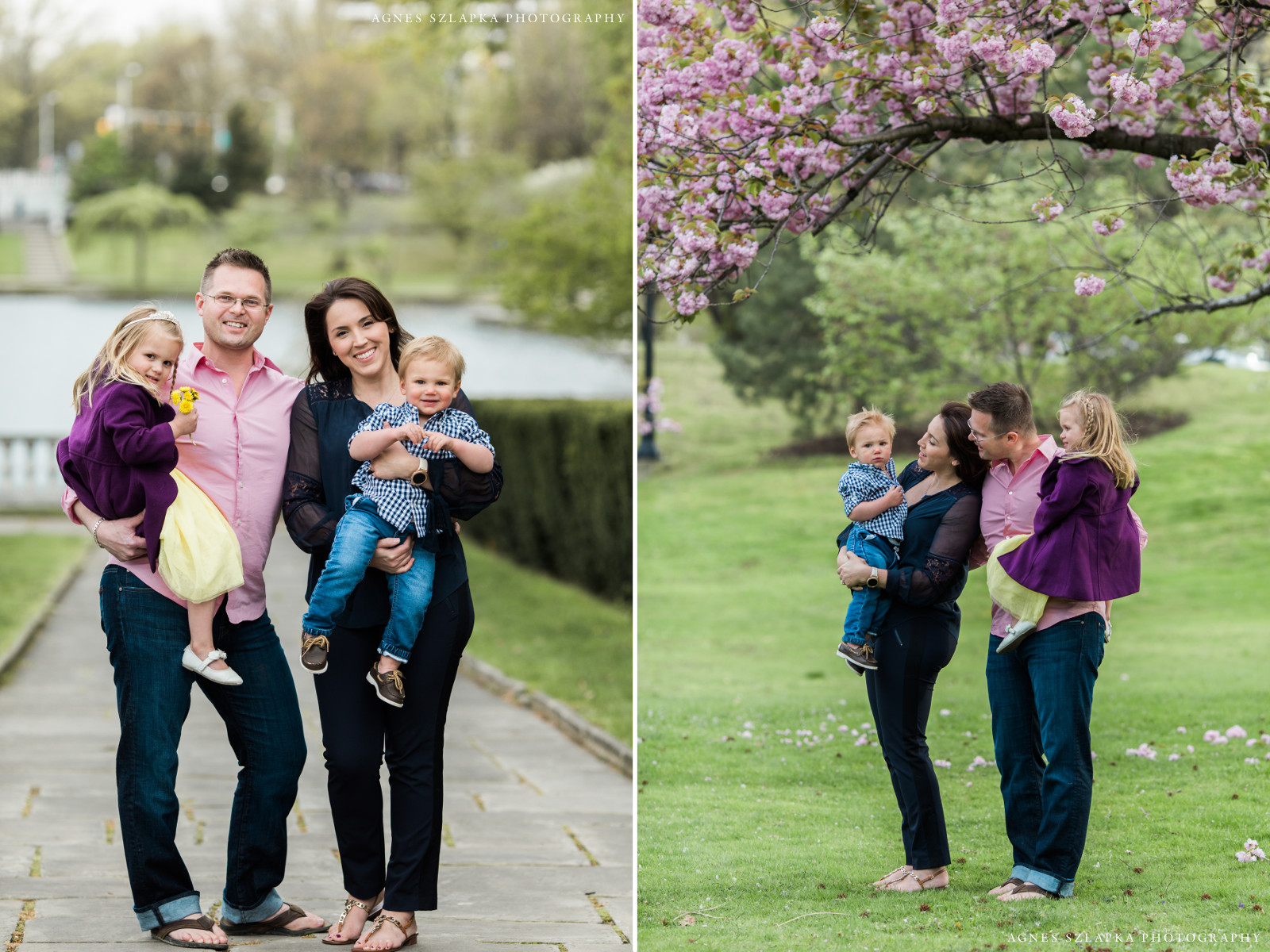family of four under cherry blossom tree | wade oval family photography