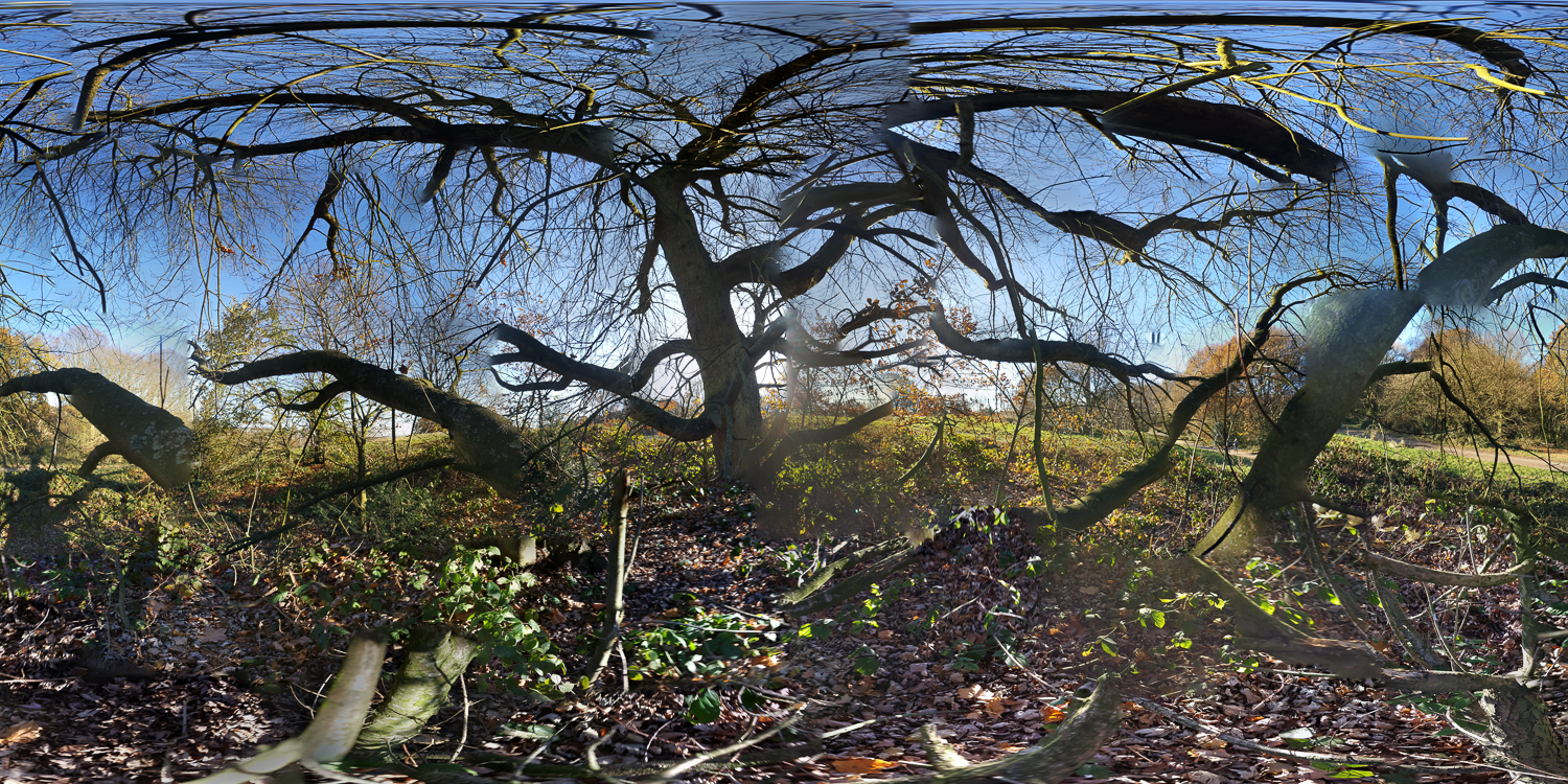 "Jason Horowitz  Hampstead Heath, London  Archival inkjet prints c. 40"" x 80"" 2016"