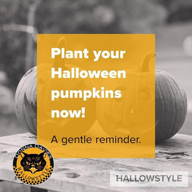 Don't say I didn't remind you! #halloween #hallowstyle #hvhalloweenqueen #hvhalloween #pumpkins #greenthumb