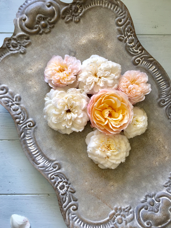 Floral Flatlay.jpg
