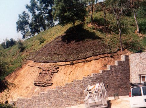 hillside-2.jpg