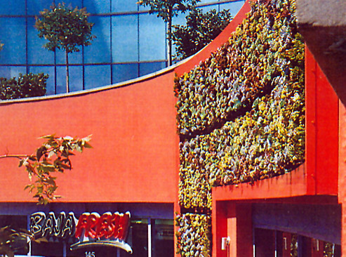 living-walls-1.jpg