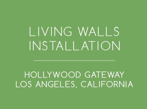 living-walls-intro.jpg