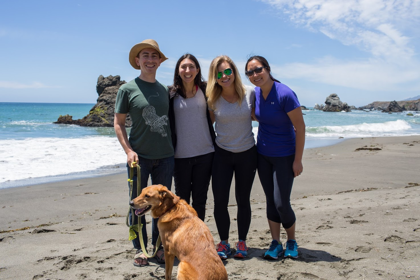 Beach time for the Binti team, including Stewie (office pup and head engineer).