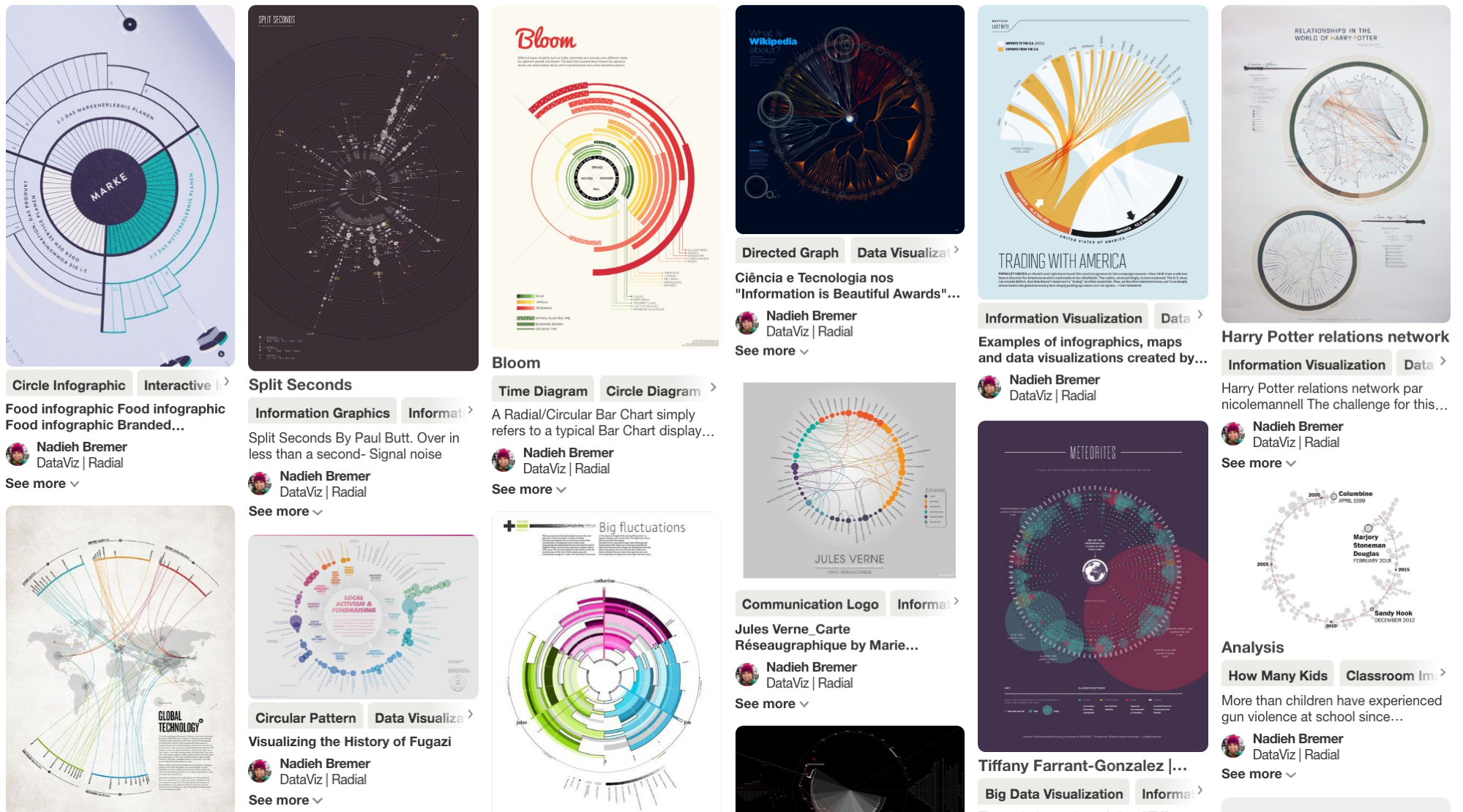Sampling Nadieh Bremer's  Data Viz   Radial  collection on Pinterest