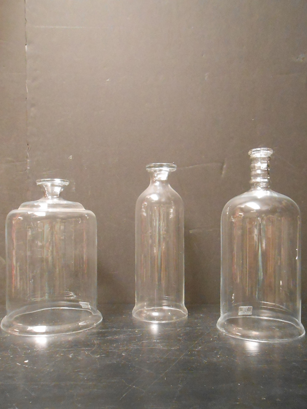 Glass cloche and bell jars