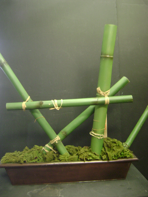 Green bamboo arrangement