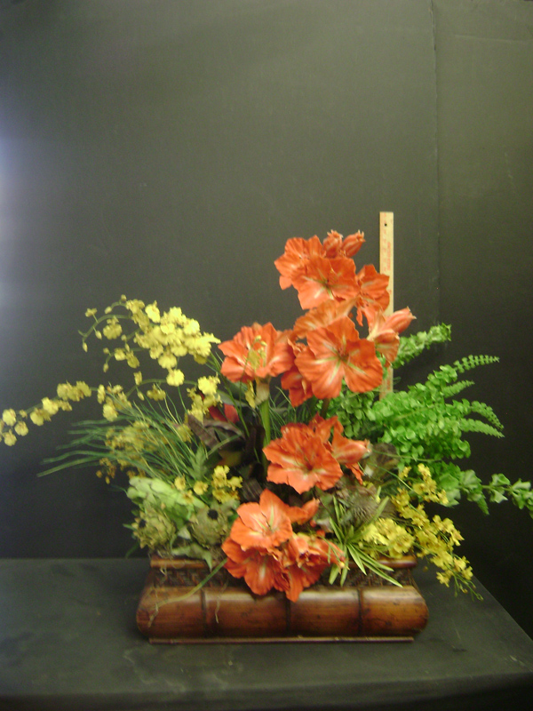 Coral amaryllis and oncidiums
