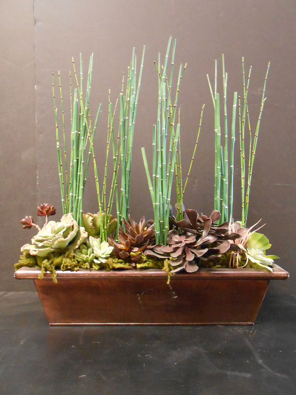 Horsetail and succulents floral