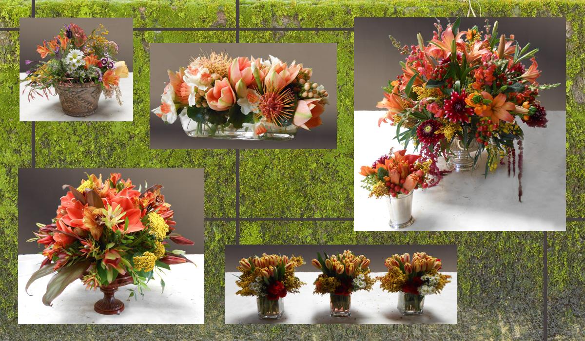 gardeny_autumn.jpg