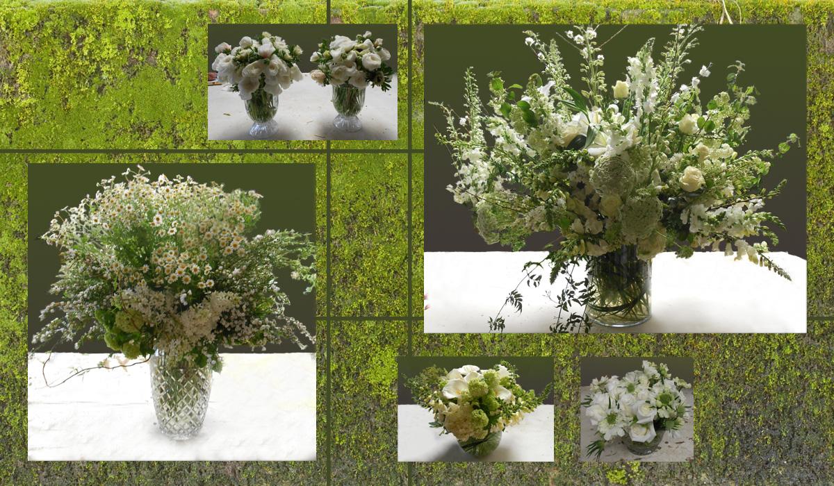 gardeny_meadow.jpg