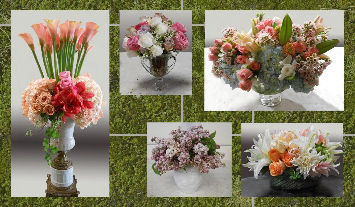 gardeny_spring.jpg