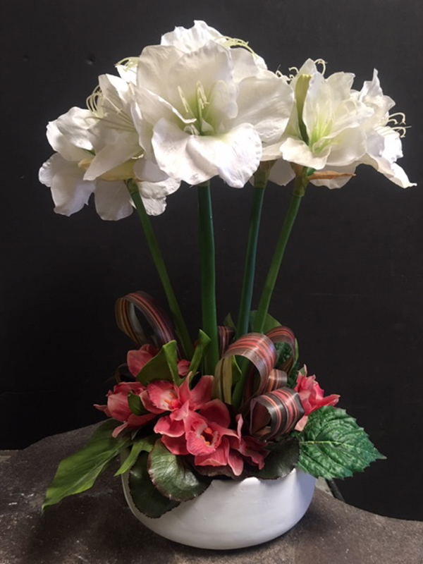 White amaryllis topiary with red and green bedding in white ceramic bowl