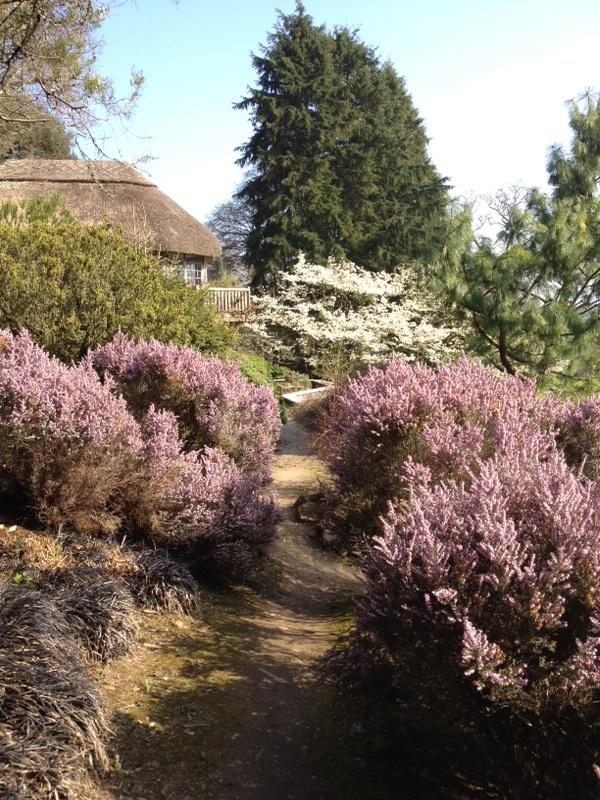 Restorative-Leadership_Spring-in-England