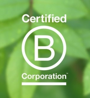 BCorpsLogo.png