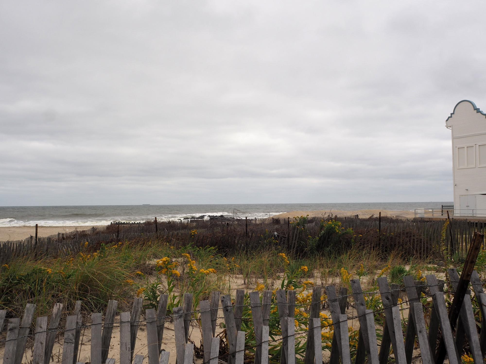Golden Rod on the Beach, Asbury Park, NJ