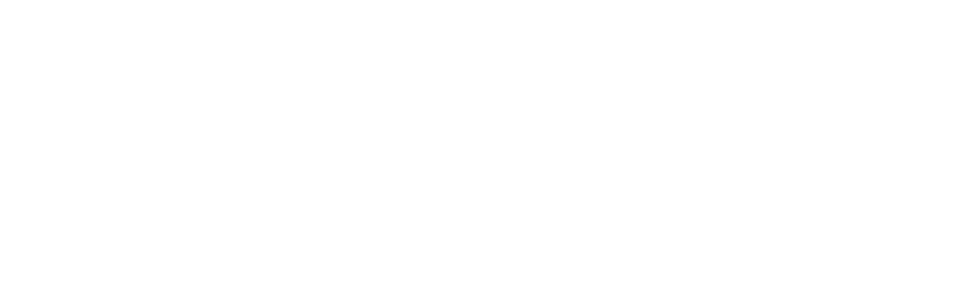 960-Vinyl-2.png