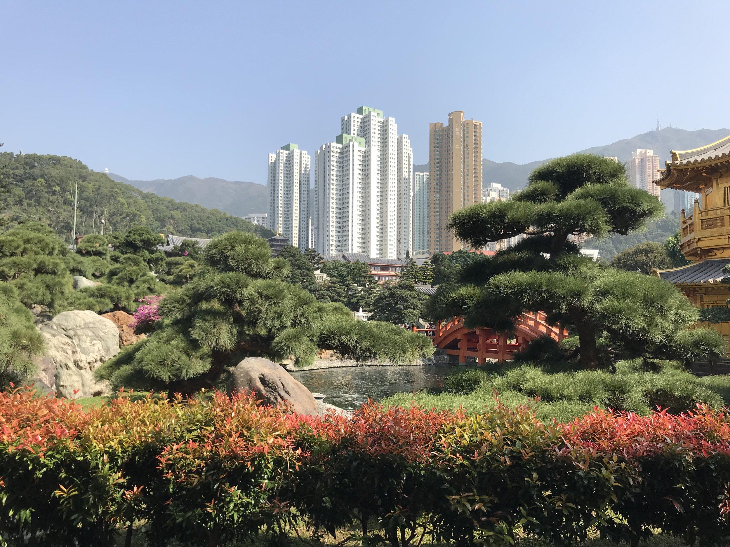Một cảnh vườn đẹp của chùa Chi Lin.