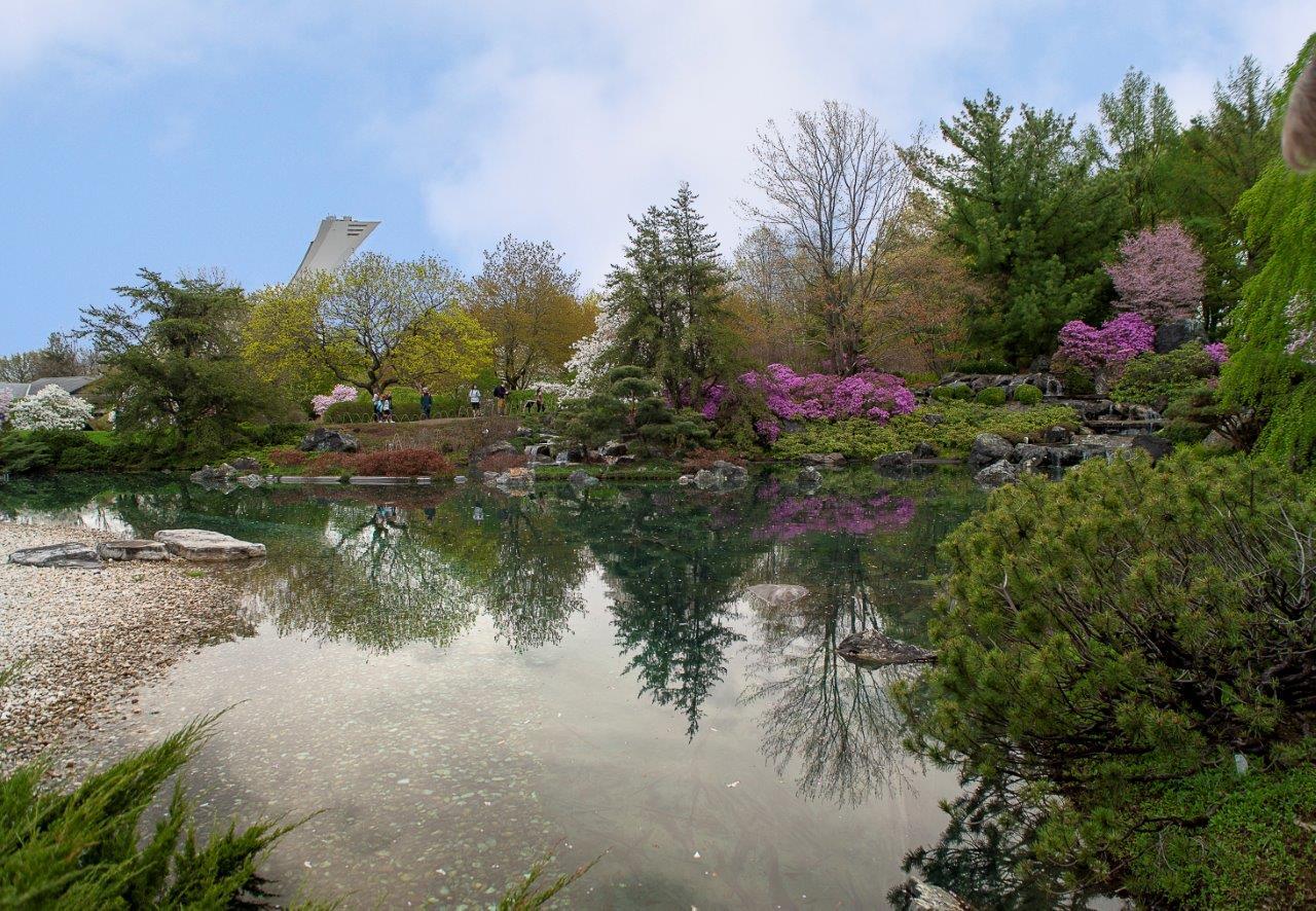 jardin-Sat1a.jpg