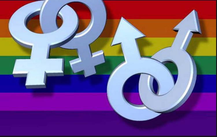 Đồng tính. Nguồn internet.