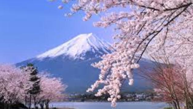 Nhật Bản và núi Phú Sĩ. Nguồn internet.