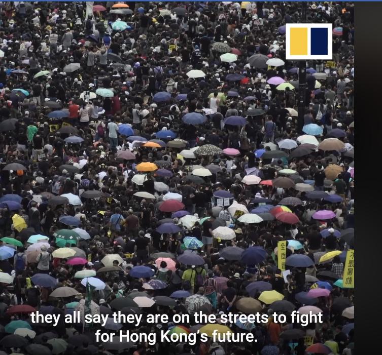 Tất cả những người biểu tình cho biết họ xuống đường để tranh đấu cho tương lai của đất nước Hong Kong. Họ không muốn sống và bị cai trị dưới luật lệ cộng sản Trung Quốc.