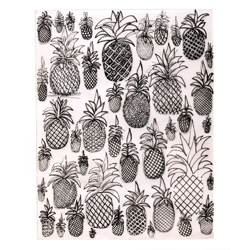 adelaide aronio ananas boceto.jpg